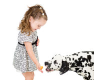 Happy baby feeding dog isolated Royalty Free Stock Images