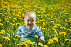 Happy baby  in flowers meadow Royalty Free Stock Image