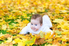 Happy baby girl in autumn park on yellow leaves. Happy laughing baby girl playing in an autumn park on yellow leaves Royalty Free Stock Photos