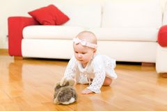 Happy baby girl crawling to rabbit toy. Happy eight month old baby girl crawling to rabbit toy on a hardwood floor in a living room stock photos