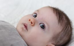 Happy baby girl lying on back Royalty Free Stock Image