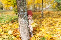 Happy baby girl with maple leaf in hand hiding behind tree in the autumn wood Royalty Free Stock Images
