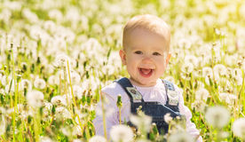 Happy Baby Girl On Meadow With White Flowers Stock Image