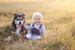 Happy Baby Girl Sitting in Field With Adopted German Shepherd Pe. A happy one year old baby girl child is sitting in a farm field at the golden hour of sunset on Stock Images