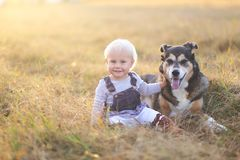 Happy Baby Girl Sitting in Field With Adopted German Shepherd Pe stock photography