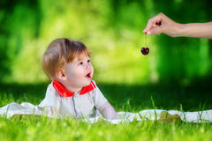 Happy baby have fun in the Park on a Sunny meadow with cherries. Stock Photos