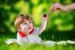 Happy baby have fun in the Park on a Sunny meadow with cherries. Stock Photography