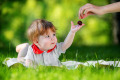 Happy baby have fun in the Park on a Sunny meadow with cherries. Royalty Free Stock Photo