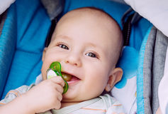 Happy baby with pacifier in a stroller Stock Photos