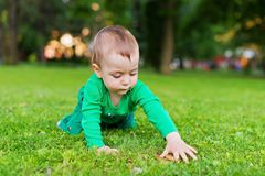 Happy baby playing on green grass Royalty Free Stock Images
