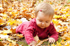 Happy baby playing with leaves Royalty Free Stock Photos