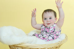 Happy baby raising hands. Sitting in basket royalty free stock photography