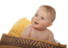 Happy baby sitting in basket Stock Images