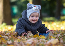 Happy baby sitting on the fallen leaves outdoors Royalty Free Stock Images