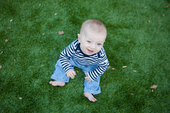 Happy baby sitting an a green lawn Royalty Free Stock Photo