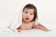 Happy baby under towel on white Stock Photography