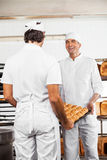 Happy Baker's Carrying Bread Loaves In Tray Royalty Free Stock Image