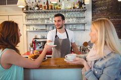 Happy barista serving coffee to female customer at cafe. Happy male barista serving coffee to young female customer at cafe Royalty Free Stock Images