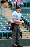 Happy baseball umpire. CAMDEN, NJ - AUGUST 15: The home plate umpire shown lauhing with his peers prior to the first pitch of a game August 15, 2010 in Camden stock images