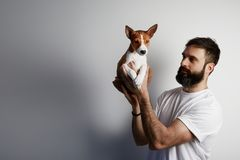 Happy bearded man with cute basenji puppy dog at home against a white background. Happy bearded man with cute basenji puppy dog at home against a white royalty free stock photos