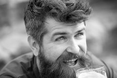 Happy bearded man with long beard enjoying a glass of beer, Friday night out. Closeup cheerful man with blue eyes and. Messy hairstyle looking up royalty free stock images