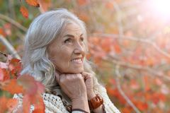 Happy beautifil elderly woman posing. In park royalty free stock photos