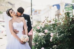 Happy and beautiful bride and groom kissing Stock Photos