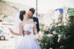 Happy and beautiful bride and groom kissing Stock Images