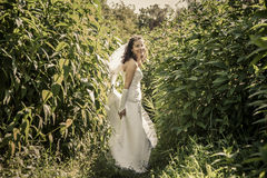 Happy beautiful bride standing in grass and smilling. Stock Photos