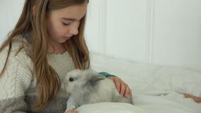 Happy beautiful girl is caressing a cute little rabbit stock footage