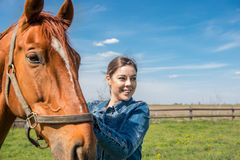 Happy Beautiful Brunette Taking Care Of Her Brown Horse Royalty Free Stock Images