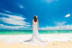 Happy beautiful fiancee in white wedding dress standing with his. Back to the viewer on shore sea. Wedding and honeymoon in the tropics Stock Photography