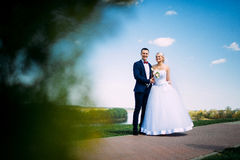 Happy and beautiful groom and bride tender kiss at spring outdoo Stock Image