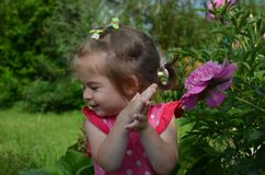 happy beautiful little girl in pink t-shirt sniffs big pink flower stock photography
