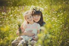 Happy beautiful mother lady posing with her cute little daughter in lovely scene of family summer life on meadow of daisy poppy f lizenzfreie stockbilder