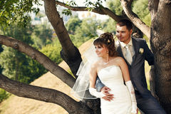 Happy and beautiful newlyweds Royalty Free Stock Image