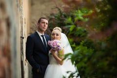 Happy beautiful stylish luxury gorgeous young couple on the back Stock Image