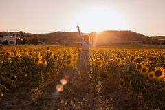 Happy young woman with arms opened in a sunflower field at sunset royalty free stock images