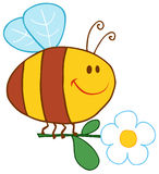 Happy bee flying with flower Royalty Free Stock Photo