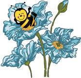 Happy bee sitting on blue flower Royalty Free Stock Photos