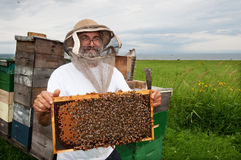Happy beekeeper Stock Image