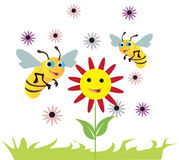 Happy Bees Over A Flowers. Vector illustration of bees over a flower on a decorated white background Royalty Free Stock Photos