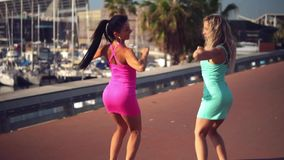 Happy best friends or sisters dancing and posing. And showing lovely relationship. They look happy. They have same stock video footage