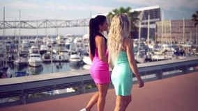 Happy best friends or sisters posing and showing lovely relationship. Happy best friends or sisters walking in the park with palm trees and yachts on background stock footage