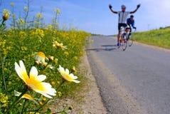 Happy biker. Biker cheering and yellowy daisies on the road Stock Photo