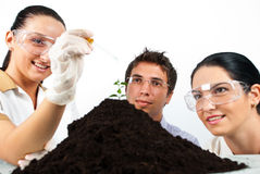 Happy biologists in laboratory. Making an experiment on a plant in soil,check also my collection Scientists people Royalty Free Stock Photo