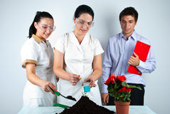 Happy biologists people  in laboratory. Three happy biologists people making experiments in laboratory,check also my collection Scientists people Royalty Free Stock Photo