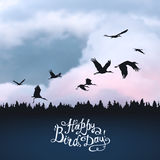 Happy Bird day! Vector card. Happy Bird day! Hand written inscription. Storks silhouettes on sunset sky Stock Photography