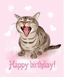 Happy birthday card. Stock Photography