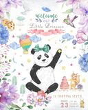 Happy Birthday card design with cute panda bear and boho flowers and floral bouquets illustration. Watercolor clip art for. Greeting card royalty free stock image